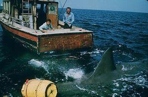 JAWS movie 1975