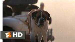 8) Movie CLIP - Cujo Won't Hurt Him (1983) HD