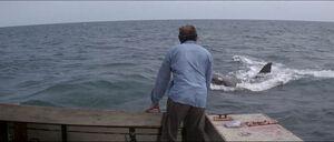Jaws-movie-screencaps com-11761