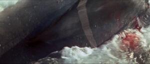 Jaws-movie-screencaps com-11998