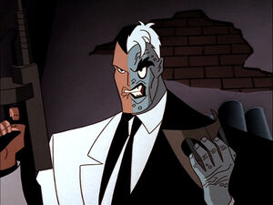 Two-Face (DC Animated Universe) 13