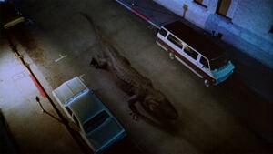 Alligator PDVD 006