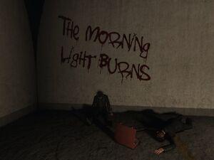 Morning Light Burms