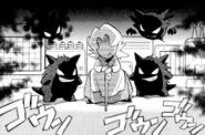 Pokemon Adventures Agatha Gengar