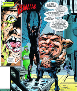 X-Man Annual Vol 1 1996 page 20 Calvin Rankin (Earth-295)