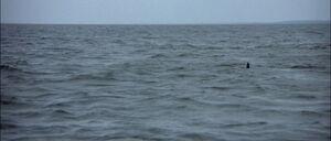 Jaws2-movie-screencaps com-10092