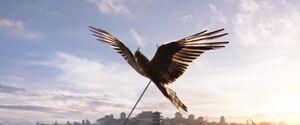 The arrow shoots Xian Lang