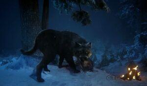 Bigbadwolf3