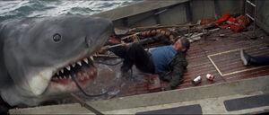 Jaws-movie-screencaps com-13944