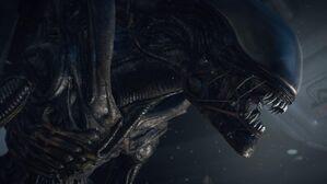 Alien Isolation Xeno