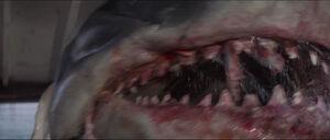Jaws-movie-screencaps com-14044