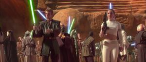 Anakin Skywalker Padmé brace
