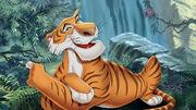 Msf jungle book cmi khan-01.jpg