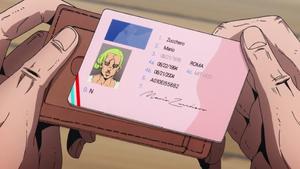 Mario's ID