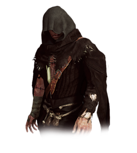 The Caretaker (Witcher)