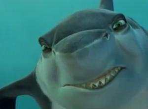 Frankie the Shark