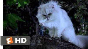 Stuart Little (1999) - You Saved Me? Scene (9 10) Movieclips