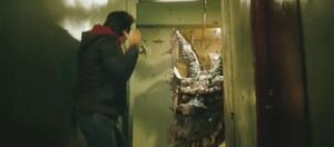 Sun Lok's Dragon chases Dave