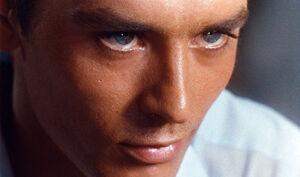 Tom eyes