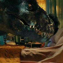 Indoraptor 47.jpg