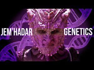 Jem'Hadar Genetics