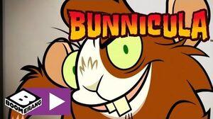 Bunnicula Scary Furball Boomerang UK