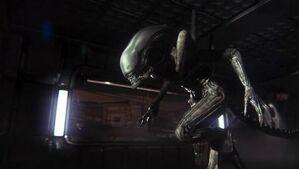 Alien-isolation-gallery-10