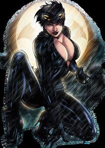 Catwoman (comic) art