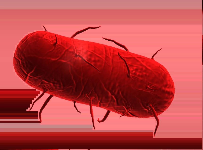 Plague (Plague Inc)