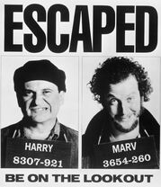 Harry and Marv Escaped.jpg