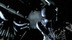 Alien-Isolation trailer