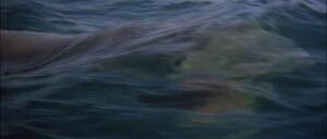 Jaws2-movie-screencaps com-13135