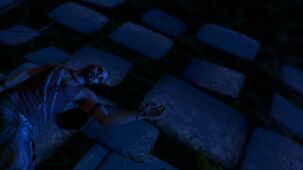 Vaas-corpse