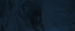 Secretpolicewolves