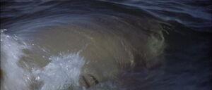 Jaws2-movie-screencaps com-13120