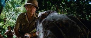 Raiders-lost-ark-movie-screencaps.com-1209