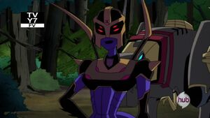 Blackarachnia meet Optimus again