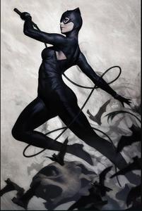 Catwoman Vol 5 10 Textless Variant.jpg