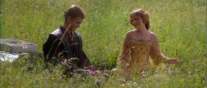 Anakin Padmé picnic