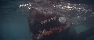 Jaws-movie-screencaps com-14272