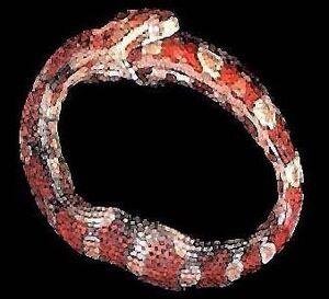 Hoop-snakejpg-92b1ea02d95aee62