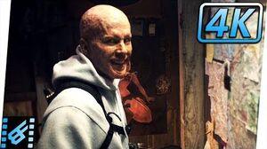 """Deadpool """"Where's Francis"""" Scene Deadpool (2016) Movie Clip"""