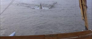 Jaws2-movie-screencaps com-12840