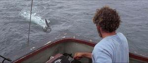 Jaws-movie-screencaps com-12008