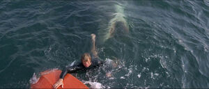 Jaws-movie-screencaps com-7364
