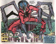 Spidertarantula