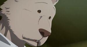 Riz anime 23