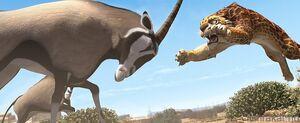 Phango vs. Antelope