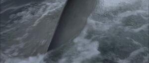 Jaws2-movie-screencaps com-10016