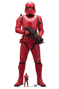 The-Rise-of-Skywalker-Sith-Trooper-cardboard-cutout